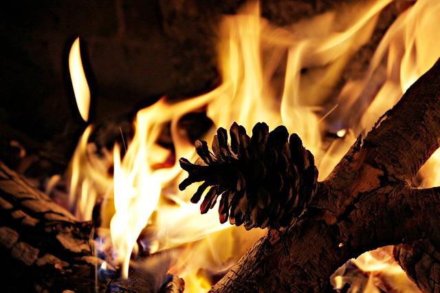 zidinys-ugnis