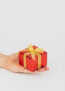 dovana tevo dienos proga